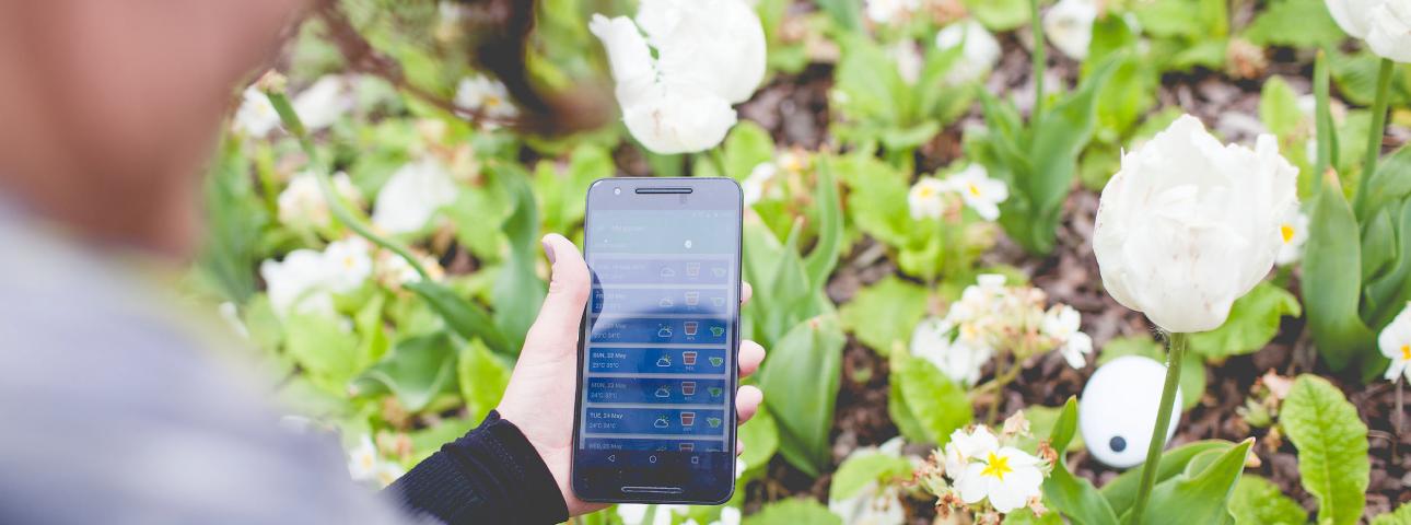 Project - MK:SMART – Garden Monitor